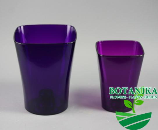 квадро фиолетовый