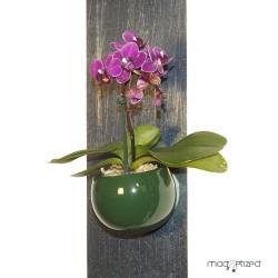 cache-pot-magnetique-o8cm-vert-anglais