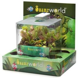 террариум с насокомоедными растениями