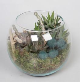 Круглый флорариум