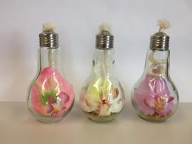 композиция в лампочке