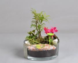 Флорариум мини композиция