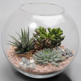 Флорариумы в стеклянных вазах