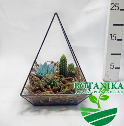 Флорариум-геометрический-треугольник_2
