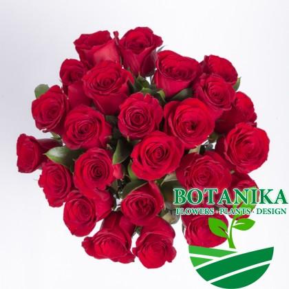 Букет Красных роз-