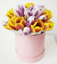 Коробка-с-Тюльпанами