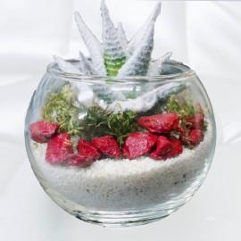 Новогодний-флорариумъ