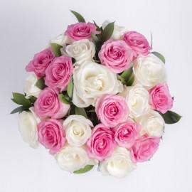 Розовые с белыми розы сверху