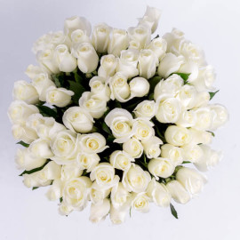 101 Белых роз св