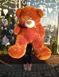 Большой коричневый медвежонок (125см)