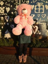 Большой розовый медвежонок (110см)