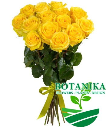 Букет желтых роз 15шт