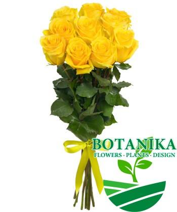 Букет желтых роз_11шт