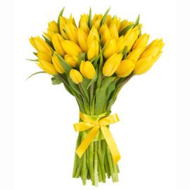 Желтые тюльпаны, 51шт