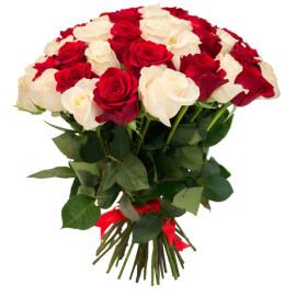 Красные и белые розы 55шт_