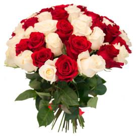 Красные_и_белые розы 55шт