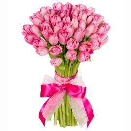 Розовые тюльпаны 51шт