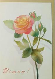 Вітаю, із трояндою